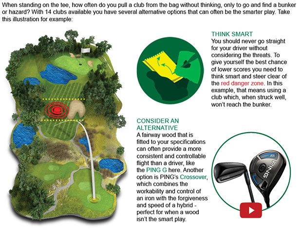 PING Woods Article